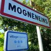 Mogneneins